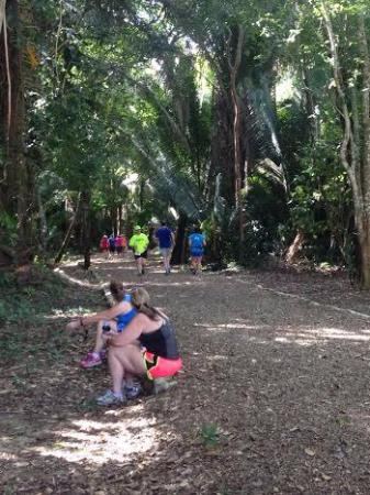 Distrito de Belice, Belice: Visiting Runners ran on trails behind Mayan Ruins
