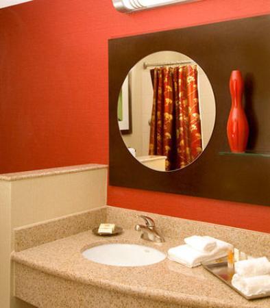 Pearland, TX: Guest Bathroom
