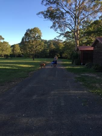 Monkerai, Australia: Heading back to spa cabin