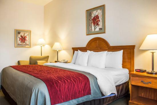 Comfort Inn & Suites Yuma: Guest Room