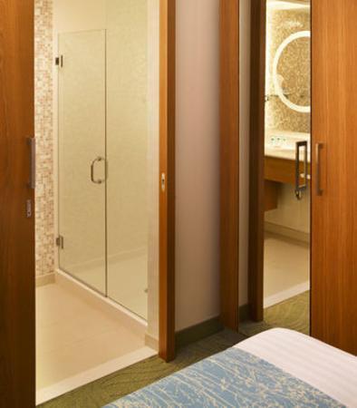 Romulus, MI: Private Shower