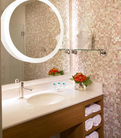 Romulus, MI: Guest Bathroom