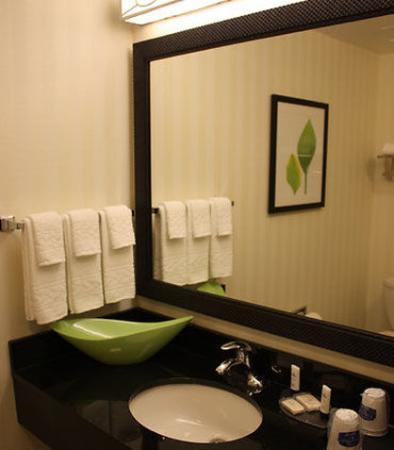 Morgantown, Batı Virjinya: Guest Bathroom