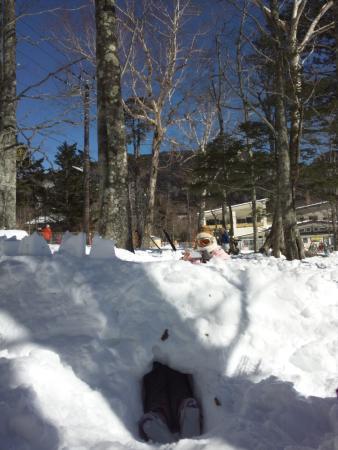 Nikko Yumoto Onesen Ski Resort: 木立で雪洞