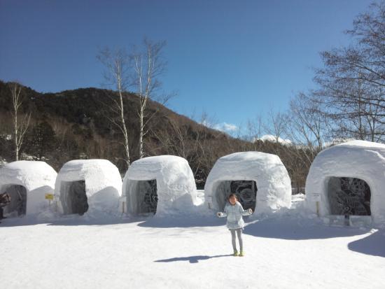Nikko Yumoto Onesen Ski Resort: 湯の湖畔