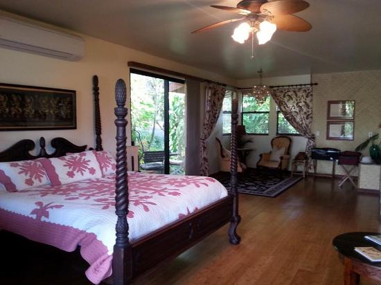 Hawaiian Oasis B&B : Waterfall suite