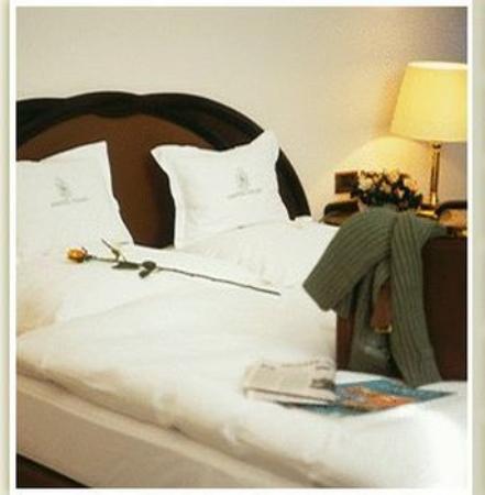 Aartselaar, بلجيكا: Superior Single Room