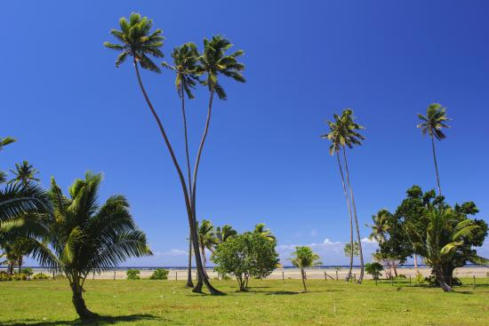 SigaSiga Sands Resort: Here is a fraction of the actual view