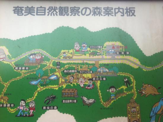 Oshima-gun Tatsugo-cho, Japón: 全体図