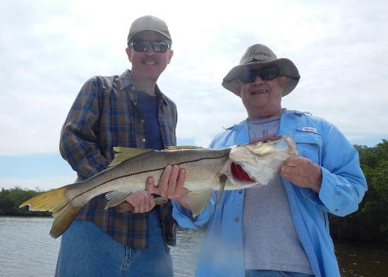 Ruskin, FL: Snook