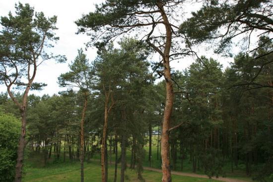 Birstonas, Litvanya: Other