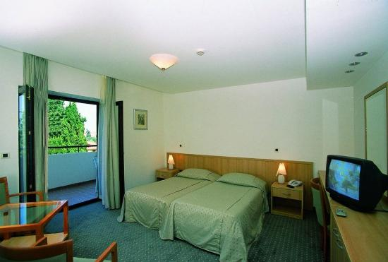 Hostin Hotel: Double room