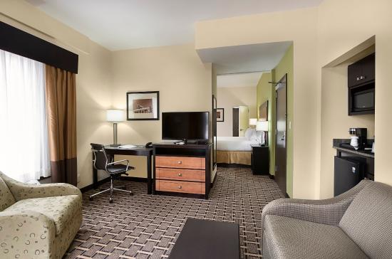 Holiday Inn Express & Suites Atlanta Downtown: Suite