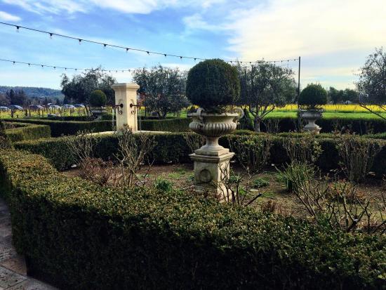 St. Helena, CA: photo3.jpg