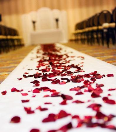 Brooklyn Park, Minnesota: Wedding Ceremony - Details