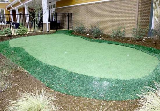 Irmo, Carolina del Sur: Putting Green