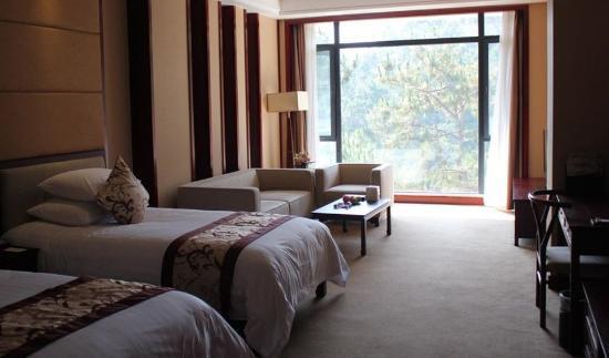 New Century Meizi Spa Hotel: Deluxe Twin Room