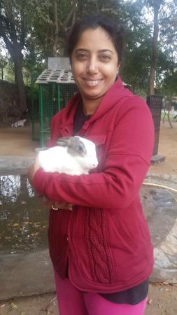 Sohna, Hindistan: photo2.jpg