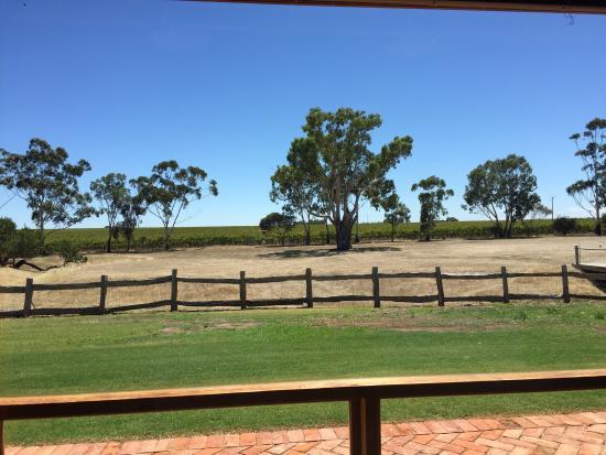 McLaren Vale, Austrália: photo0.jpg