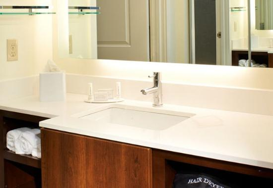 Ann Arbor, MI: Guest Bathroom Vanity