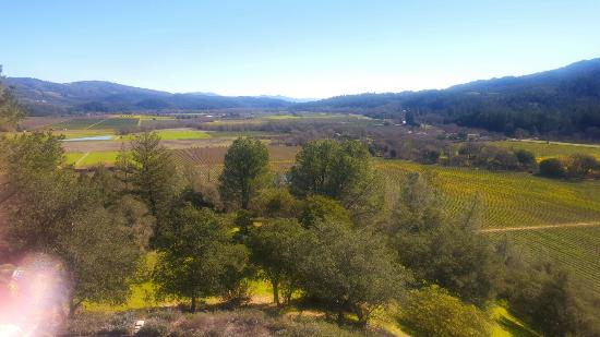 Sterling Vineyards: 20160208_123331_large.jpg