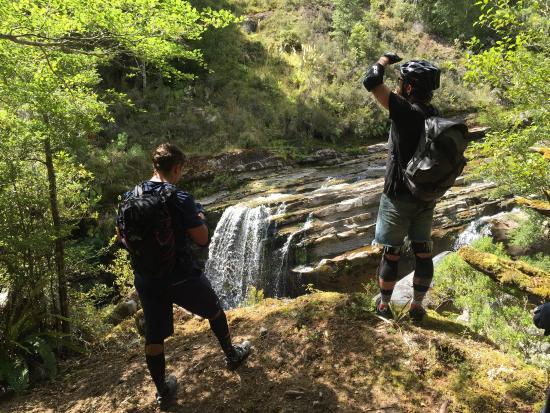 Westland National Park (Te Wahipounamu), New Zealand: photo6.jpg