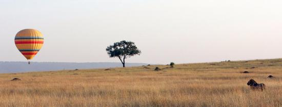 Roaming Africa Tours and Safaris - Day Tours