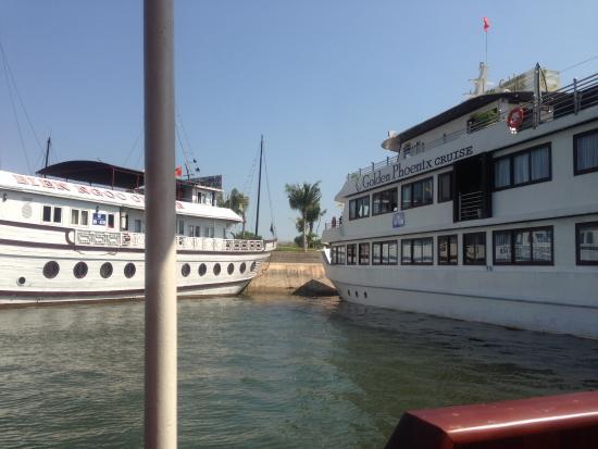 写真Darian Culbert Day Cruises枚