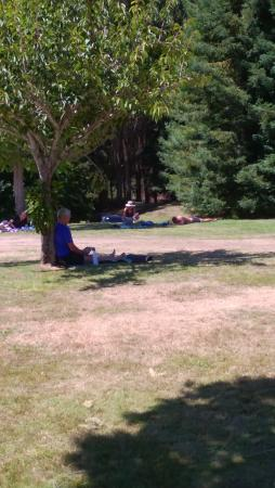 Wairakei Resort Taupo: Guests relaxing on lawns