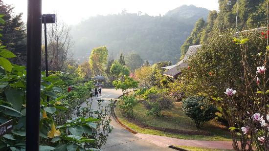 Fang City, Thailand: 20160209_171834_large.jpg