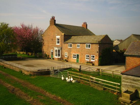 Burton Grange Farmhouse Bed and Breakfast