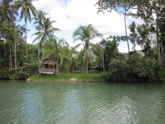 Loboc, Filipina: jungle estate