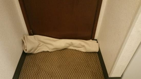 Tukwila, WA: The blanket you have to put by the door to keep the light out that comes thru the hole!!!! This