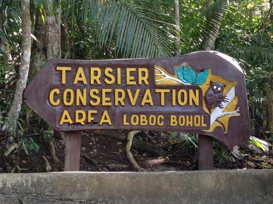 Loboc, Filipina: Скучно