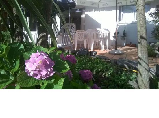 Hotel A Saint Etienne: jardin