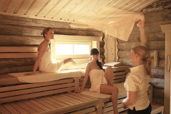 Landhotel Voshoevel: Sauna