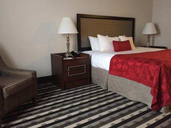 Ramada Springfield North: Standard King