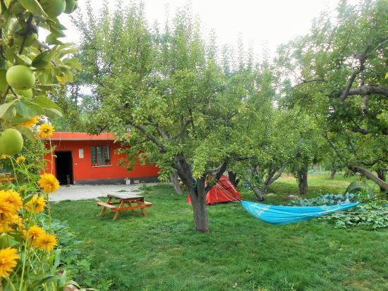 Camardi, Turquía: Taurus Guest House