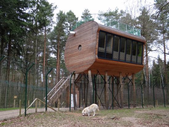 2tes baumhaus bild von tree inn baumhaushotel d rverden tripadvisor. Black Bedroom Furniture Sets. Home Design Ideas
