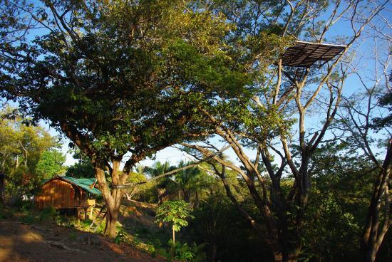 Nicoya, Kostaryka: Platform