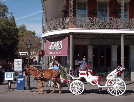 Top Rated New Orleans Tours