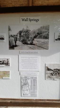 Palm Harbor, FL: History