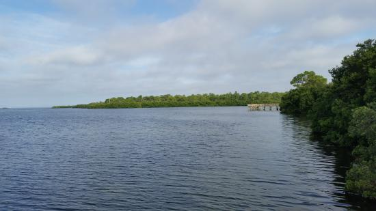 Palm Harbor, FL: Great views of the bay