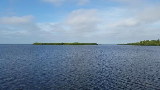 Palm Harbor, FL: Beautiful view