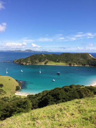 Paihia, Nova Zelândia: photo1.jpg