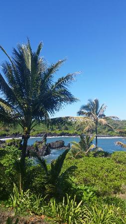 Wailuku, Hawái: 20160212_095416_large.jpg