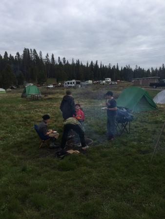Bridge Bay Campground: photo2.jpg
