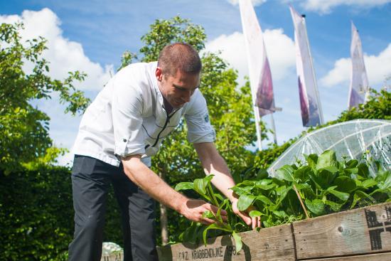 Nieuwegein, Pays-Bas : Chef eigenaar in de moestuin