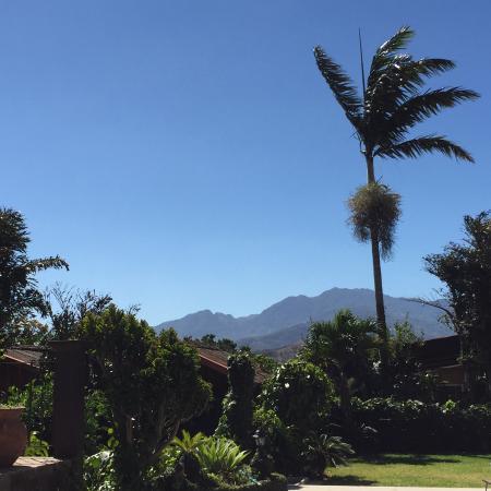 San Antonio De Belen, Costa Rica: Paradise!