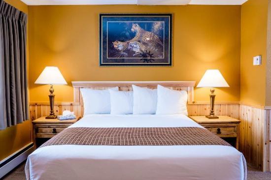 Murphy's Resort at Estes Park : Single Queen Room